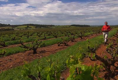 Travel Oz Series 4 Episode 3 - Food and Wine South Australia